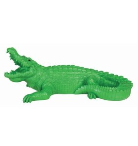 &KLEVERING Coinbank Crocodile Green  엔클레버링 악어 저금통